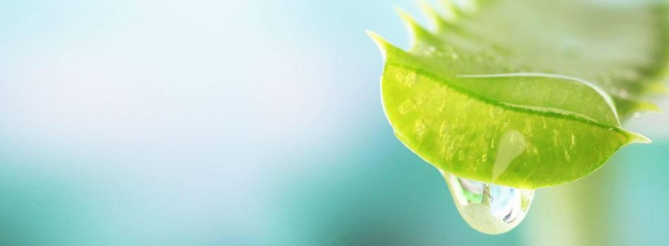 Varför används glycerin i några av era hudvårdsprodukter?