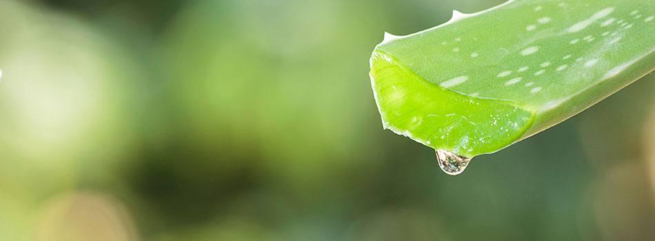 Varför är några av era recept inte 100% ekologiska?
