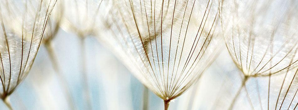 Är era produkter biologisk nedbrytbara?